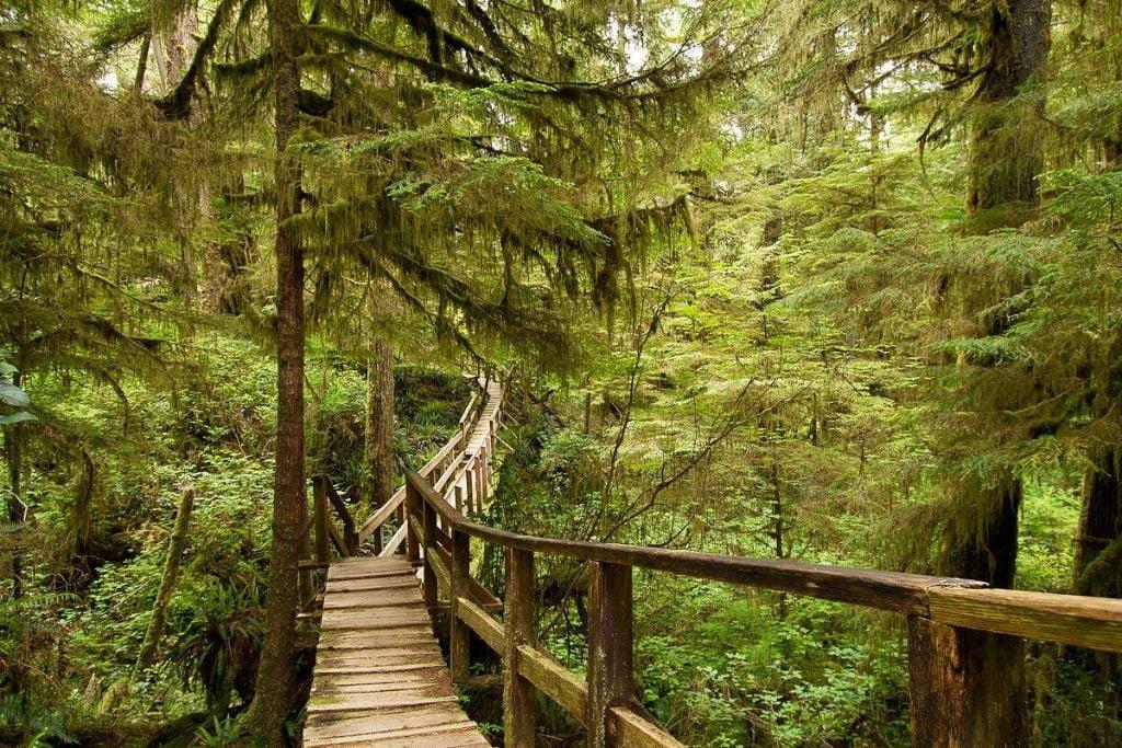 Pacific Rim National Park vancouver canada