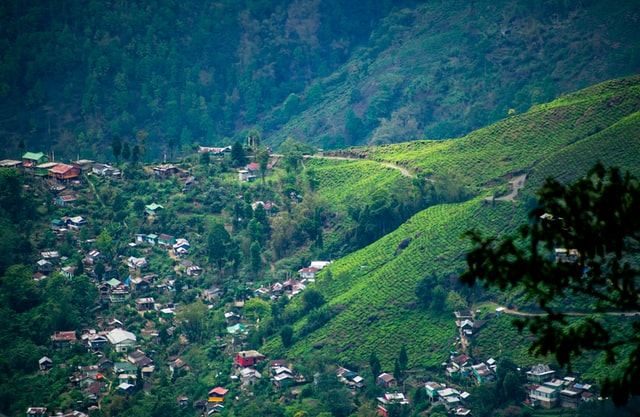 travel quarantine india darjeeling