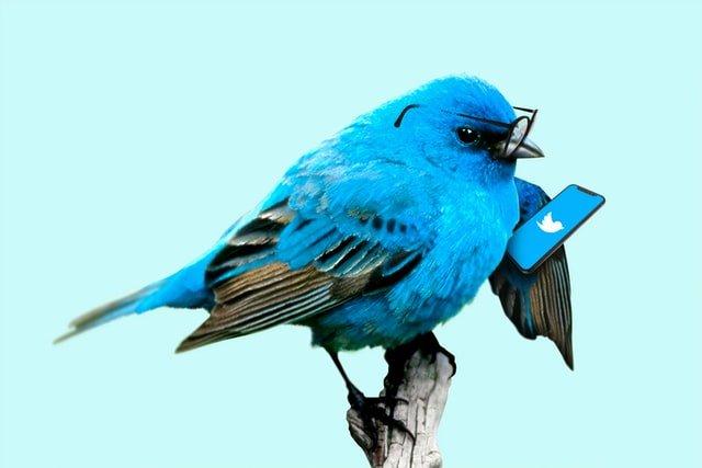 Twitter mask tweets twitter video